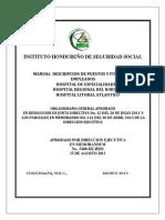 06.- Manual de Puestos y Funciones Empleados Hospitales Ihss