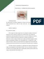 teoria electromagnetica(2)(2).doc