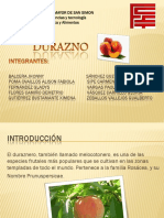recursos naturales (1).pdf