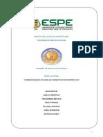 informe-2-pigmentación.docx