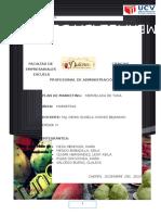 Plan de Marketing - Informe Final