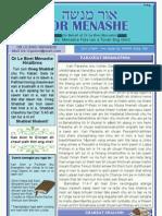 OR MENASHE.27 (29.5.2010)