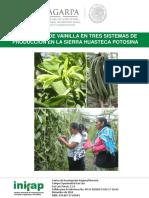 PRODUCCIÓN DE VAINILLA.pdf