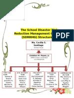 SDRRM Sample