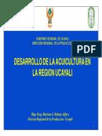 18 Avances Realizados en El Marco de La Implementación Del PNDA (Ucayali)