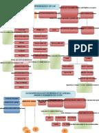 PDF Converter — #1 Free PDF Creator | PrimoPDF