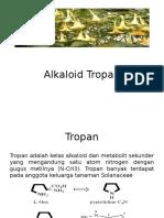 Tropan.pptx
