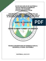 GallPonedoras TesisProyectoProd Guatemala