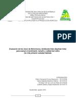 PROTOCOLO - ESTADISTICA APLICADA A LA PRODUCCION AGRICOLA