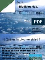 LA_PERDIDA_DE_LA_BIODIVERSIDAD.ppt