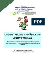 Understanding Angry Feelings
