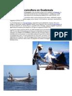 Pesca y La Acuicultura en Guatemala