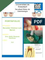 endodoncia ensayo