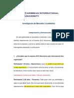 CIU IMC - Categorización y Estructuración