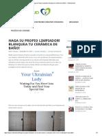 Para limpiar mayolicas.pdf