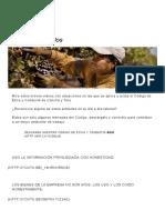Concha y Toro etica.pdf