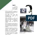 Articulo Mano Negraaaaa (1)