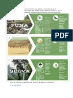Biomas en El Peru