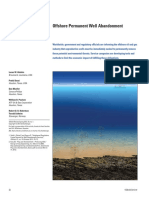 Offshore Well Abandonment.pdf