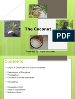 All about Coconuts! your guide to tropical isles Presentation