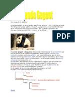 OspandaMartaG_120510
