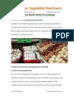 America Garlic Onion Processing