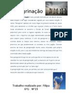 Peregrinação-Filipa(6ºG)