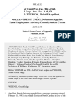 66 Fair empl.prac.cas. (Bna) 360, 65 Empl. Prac. Dec. P 43,371 Brenda Patterson v. McLean Credit Union, Equal Employment Advisory Council, Amicus Curiae, 39 F.3d 515, 4th Cir. (1994)
