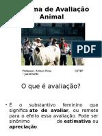 Sistema de Avaliação Animal 4 Ano