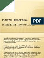 Punctia-percutanata Cursrom II