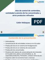 8-Colon Velasquez INIGEMM.pdf