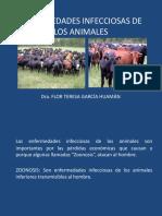 Enfermedades-infecciosas-animales.pdf