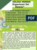Kelompok 1 Fisiologi Hewan