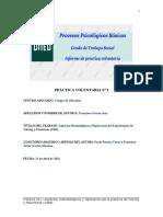 PRÁCTICA_VOLUNTARIA_Nº_1_proceso_con_todos_los_datos_incluidos_(1).docx