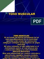 10 Tono Muscular
