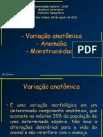 02 Variac3a7c3a3o Anomalia Monstruosidade Ana