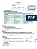 Resumen Bacterias (2)