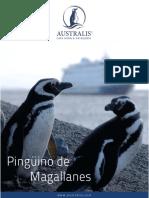 Pinguinos Es