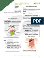 #Biologia Visao Geral Sistema Digestorio v01
