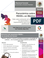 04-REDD+ en Mexico - J.A.Alanis et al