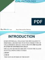 Glands Oral Patho