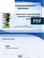 Plp - Dlp - Atención