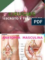 Cirugias de Escroto y Testiculo