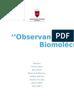 Observando y Descubriendo Biomoléculas