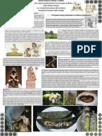 ENTRE_HONGOS_DIOSES_Y_COMIDA_Un_breve_vi.pdf
