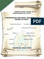 Constitución de Empresas Ultimo