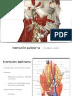 09 Cabeza y Cuello Inervacion Autonoma