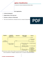 Basis for Animal Kingdom Classification