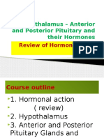Hypothalamus – Anterior Pituitary and their Hormones.pptx