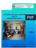 ASIS 2013 MICRO RED ATE II.pdf